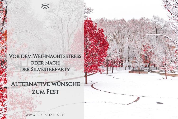 Alternative geschäftliche Weihnachtswünsche: Blogtitel vor einem verschneiten Park mit Bäumen